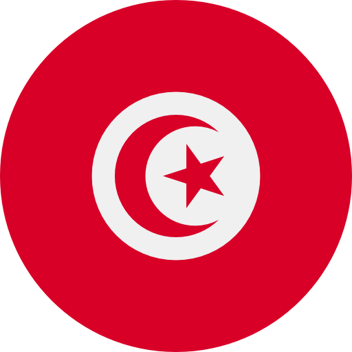 Dedicated Servers in Tunis